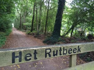 Rutbeekcross